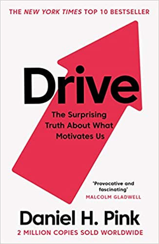 DRIVE The Surprising Truth About What Motivates