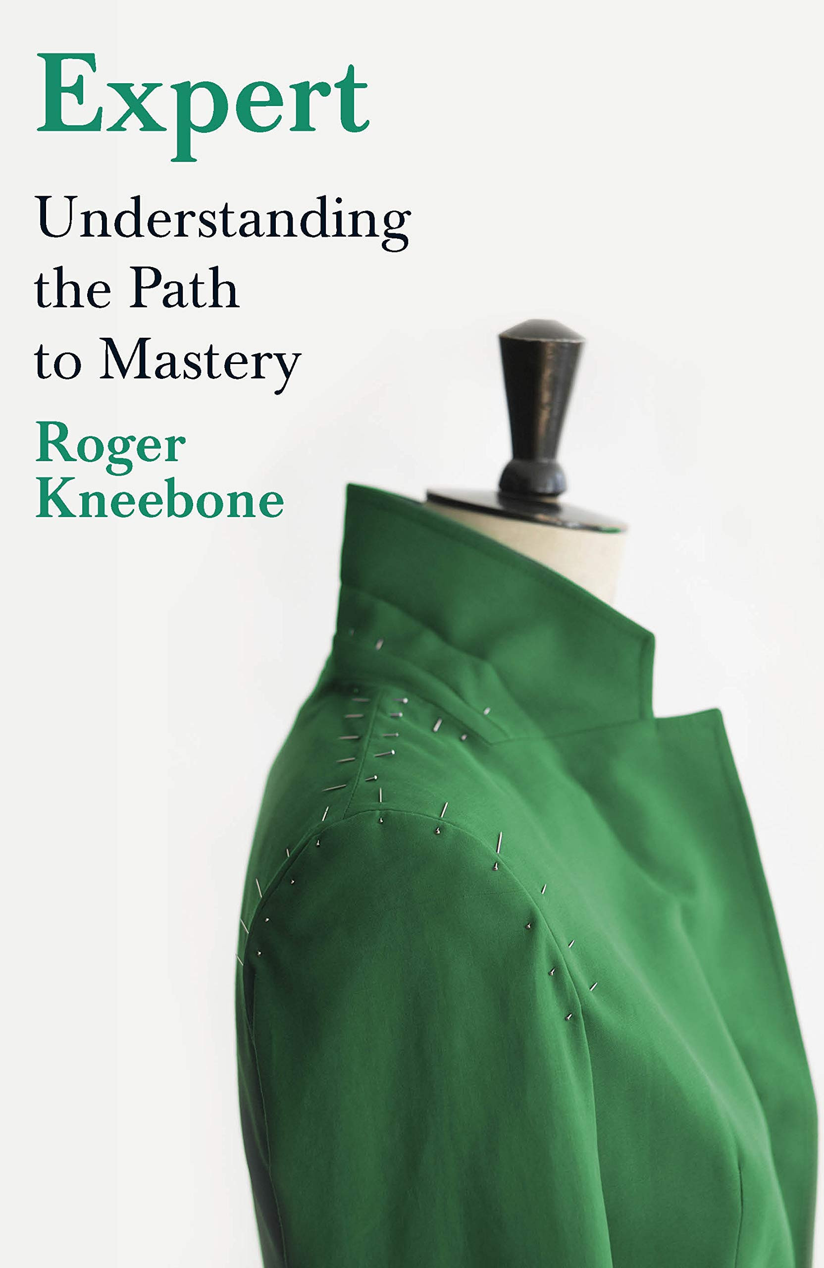 Expert - understanding the path to mastery