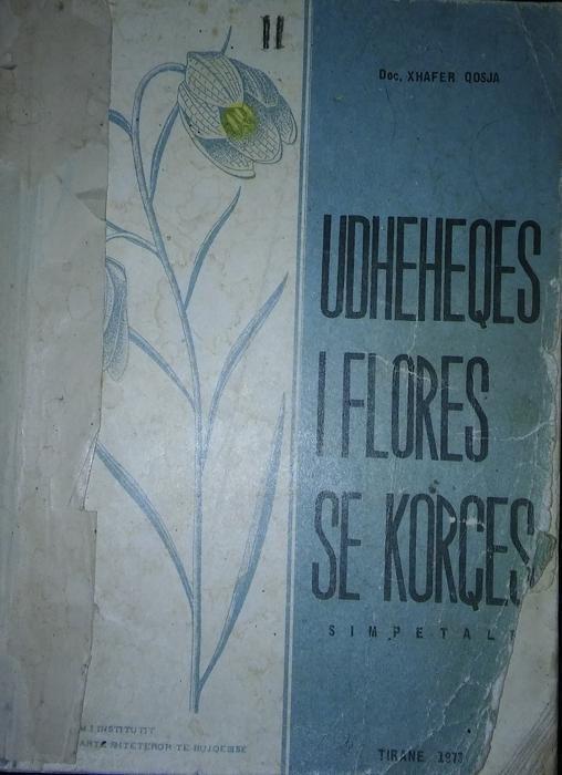 Udheheqes i Flores se Korces II (simpetalet)